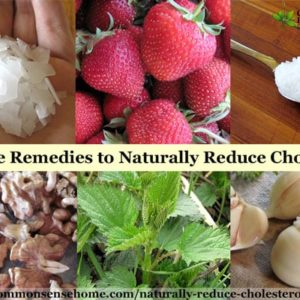 15 Ways to Naturally Reduce Cholesterol and Lower the Risk of Heart Attack - Plus Cholesterol's Role in the Body and Side Effects of Statin Medication