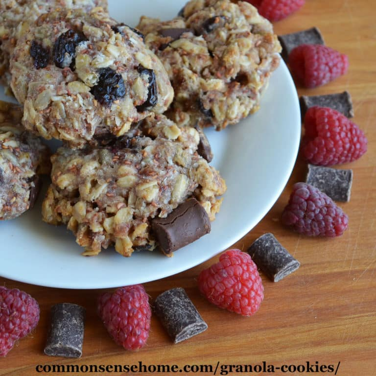 Chocolate Raspberry Granola Cookies – Honey Sweetened, GF Option