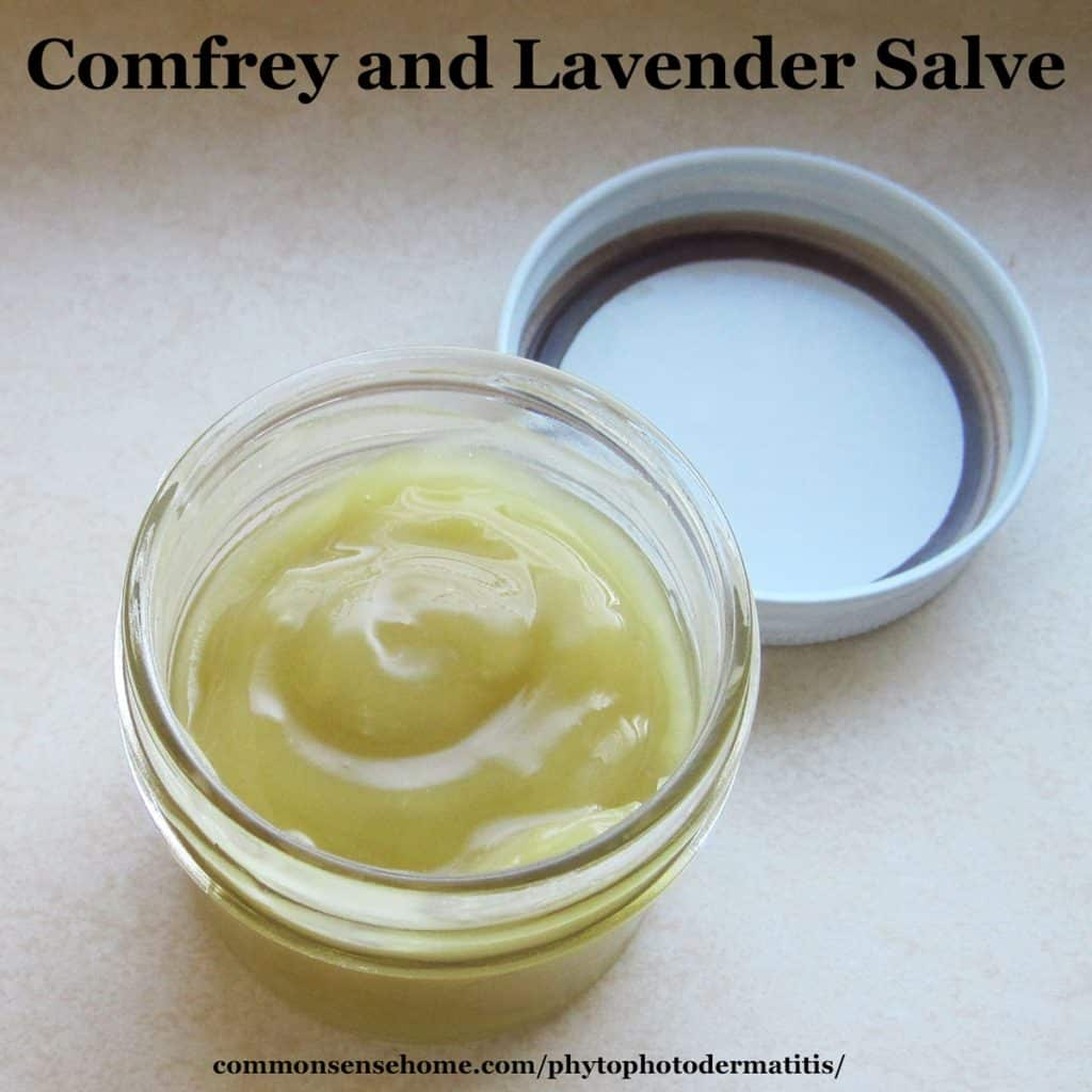comfrey-lavender-salve