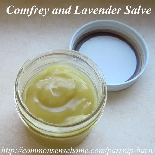 Simple Comfrey and Lavender Salve
