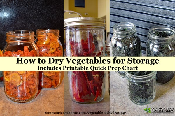 Vegetable Dehydrating – How to Dry Vegetables for Storage