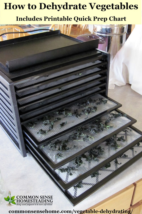 Vegetable Dehydrating is a great way to store veggies in less space with minimal equipment. Post includes printable chart with prep steps & drying times.
