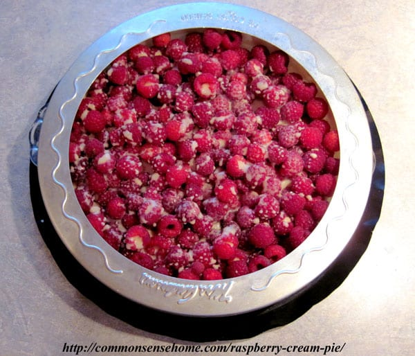 Homemade raspberry pie