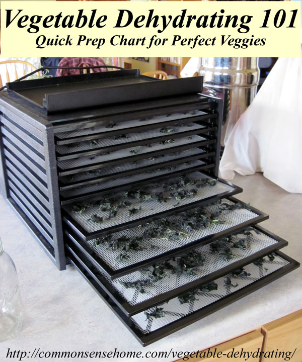 Vegetable Dehydrating 101 - quick reference chart for vegetable dehydration preparation and drying times. #dehydrating #foodstorage