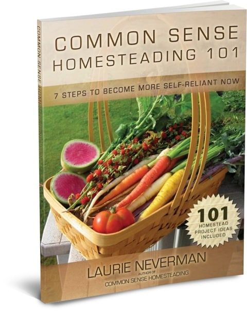 Homesteading-101 ebook 3D