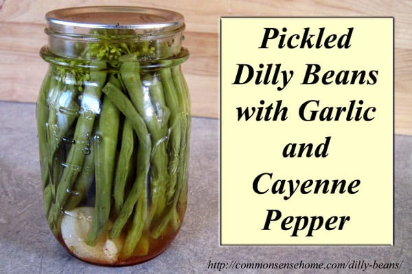 Pickled Dilly Beans with Garlic and Cayenne Pepper - this easy vinegar pickle will allow you to can green beans without a pressure canner.