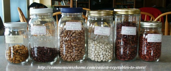 The Easiest Vegetables to Store - Dried Beans
