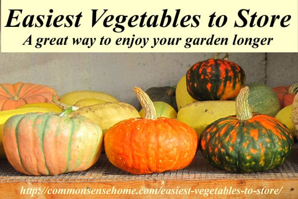 """The 5 Easiest Vegetables to Store - These crops are so simple to store they should be a staple in every garden or """"stock up"""" item from the farmers market."""