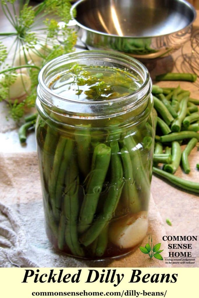 pickling dilly beans