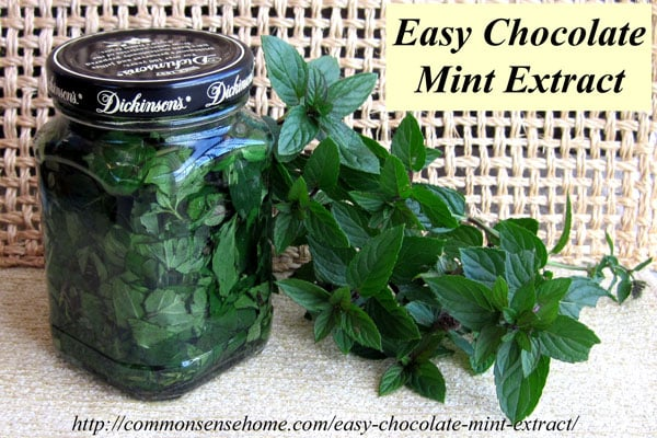 10 Easy Herbal Gifts to Enjoy Now, Plus One Gift That Lasts All Year Long - How to Make Homemade Chocolate Mint Extract