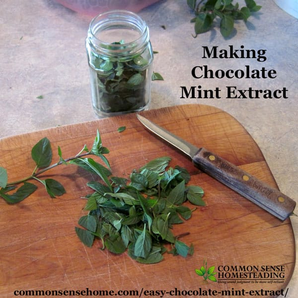 Homemade Mint Extract - This easy chocolate mint recipe is a great way to use your home grown mint for cooking, baking, hot chocolate, gift giving and more.