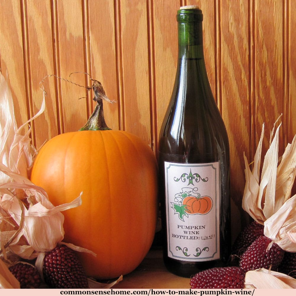 pumpkin wine with pumpkin and Indian corn