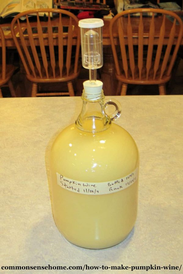 second ferment of pumpkin wine in gallon jug with airlock