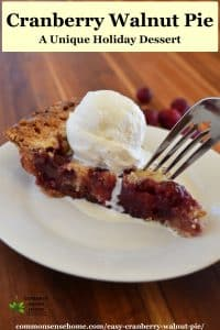 cranberry walnut pie with ice cream on white plate