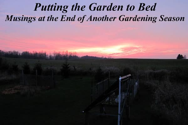 Putting the Garden to Bed - Musings at the End of Another Gardening Season