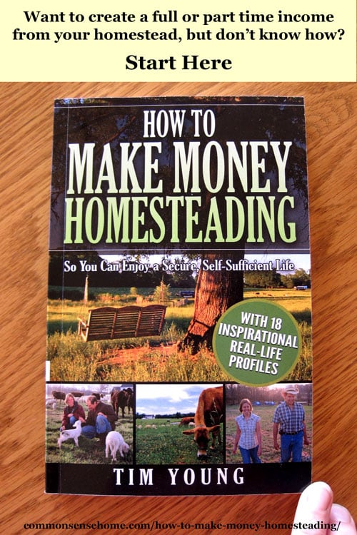 How to Make Money Homesteading So You Can Enjoy a Secure, Self-Sufficient Life - Many ideas for income streams, reducing expenses and creating your dreams