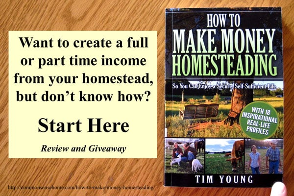 How to Make Money Homesteading So You Can Enjoy a Secure, Self-Sufficient Life