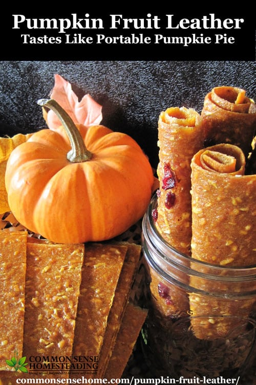 This dried pumpkin fruit leather is an easy to make snack. Nutritious and portable, pumpkin leather doubles as a way to store extra pumpkin.