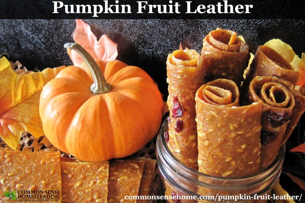 This dried pumpkin fruit leather is an easy to make snack that tastes like pumpkin pie. Nutritious, portable, and doubles as a way to store extra pumpkin.