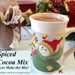 Homemade Spiced Hot Cocoa Mix Recipe