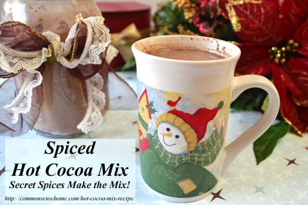 Homemade spiced hot cocoa mix recipe with a surprise ingredient. Make some up for a quick hot chocolate fix or to share as a special yet inexpensive gift.