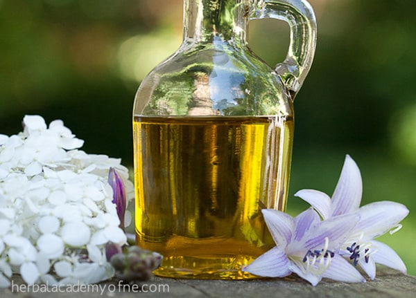 10 Easy Herbal Gifts to Enjoy Now, Plus One Gift That Lasts All Year Long - Lavender Infused Oil Recipe