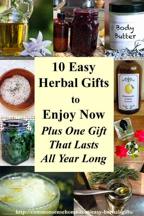10 Easy Herbal Gifts to Enjoy Now, Plus One Gift That Lasts All Year Long