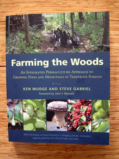Farming the Woods Permaculture Book