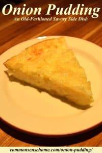 onion pudding slice