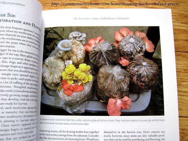 Organic Mushroom Growing Book