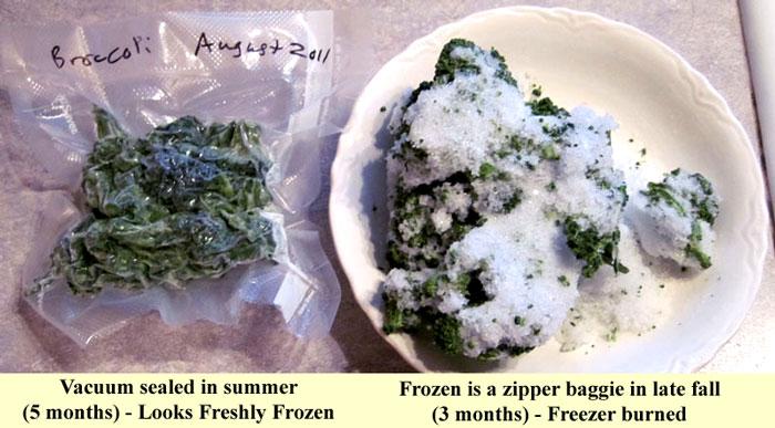vacuum sealer comparison - vacuum sealed bag versus zipper bag