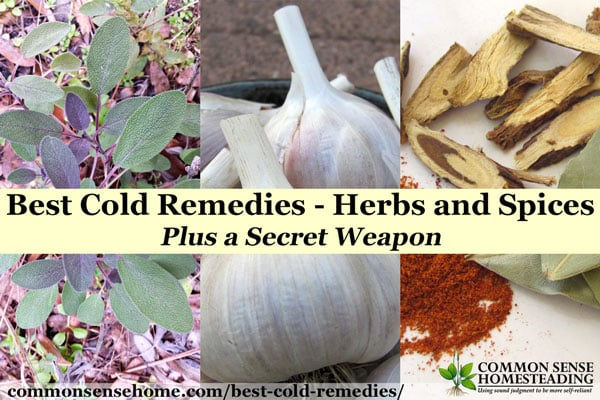 The best cold remedies (and flu remedies) are those you add to your routine before you get sick. Fight germs with herbs, spices and the kitchen sink.