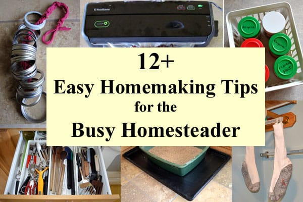 Collage of homemaking tips