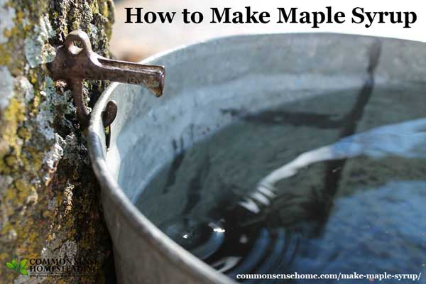 How to Make Maple Syrup, from tapping the trees and gathering the sap to bottling your syrup, tips for cooking with maple syrup & a maple syrup substitute.