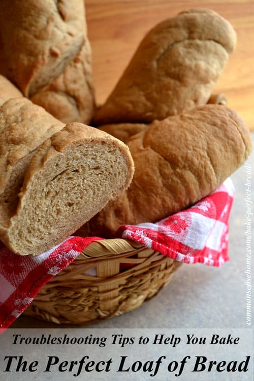 Have trouble baking homemade bread? Get answers to the most common bread baking questions to help you turn baking flops into bread you'll love.