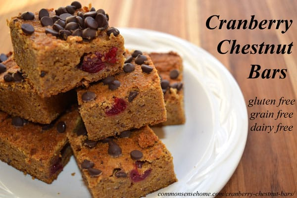 Cranberry Chestnut Bars Recipe made with roasted chestnuts or chestnut flour, pumpkin, cinnamon and dried cranberries. Gluten free, grain free, dairy free.