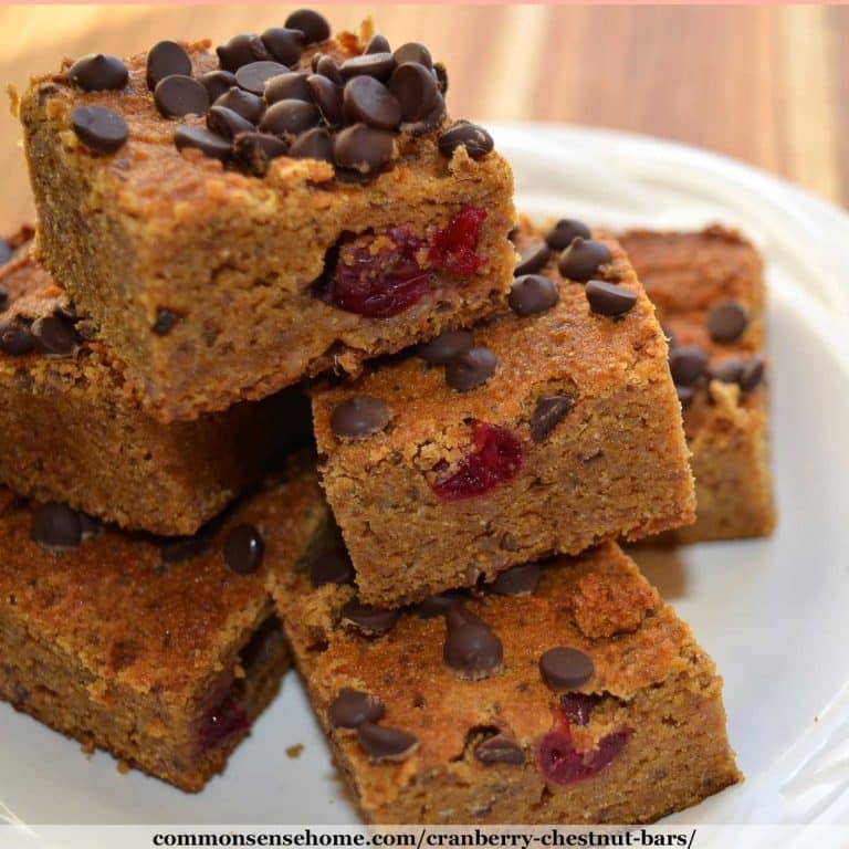 Cranberry Chestnut Bars – Gluten Free, Grain Free, Dairy Free