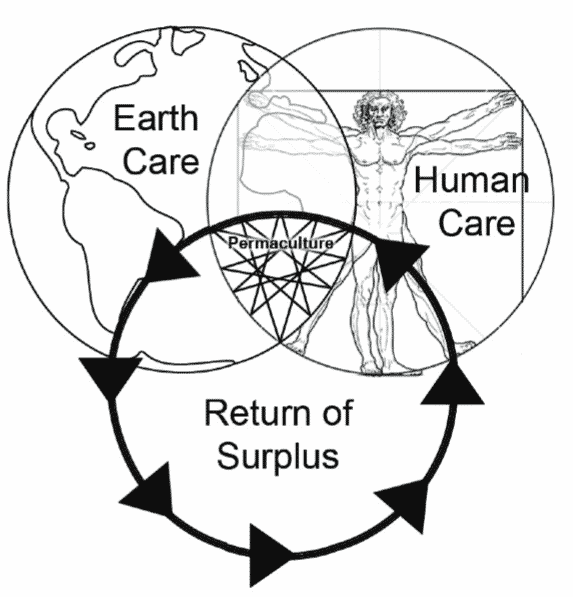 In a permaculture system, each part supports the other, creating energy instead of consuming.