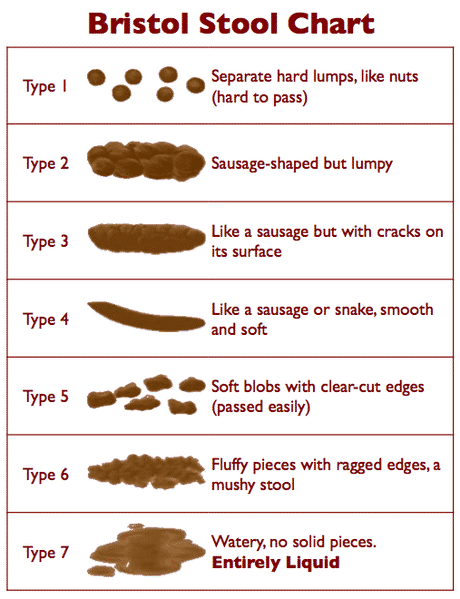 Bristol Stool Chart - poop chart with healthy bowel movements and unhealthy bowel movements