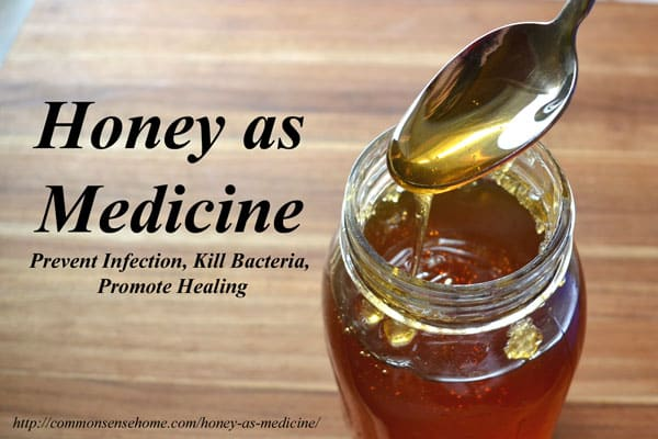 Honey As Medicine Prevent Infection Kill Bacteria