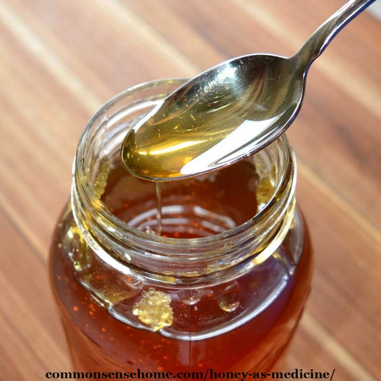 Honey as Medicine – Prevent Infection, Kill Bacteria, Promote Healing