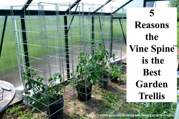 Learn How The Vine Spine™ Garden Trellis Can Make Your Vertical Gardening  Easier With Long