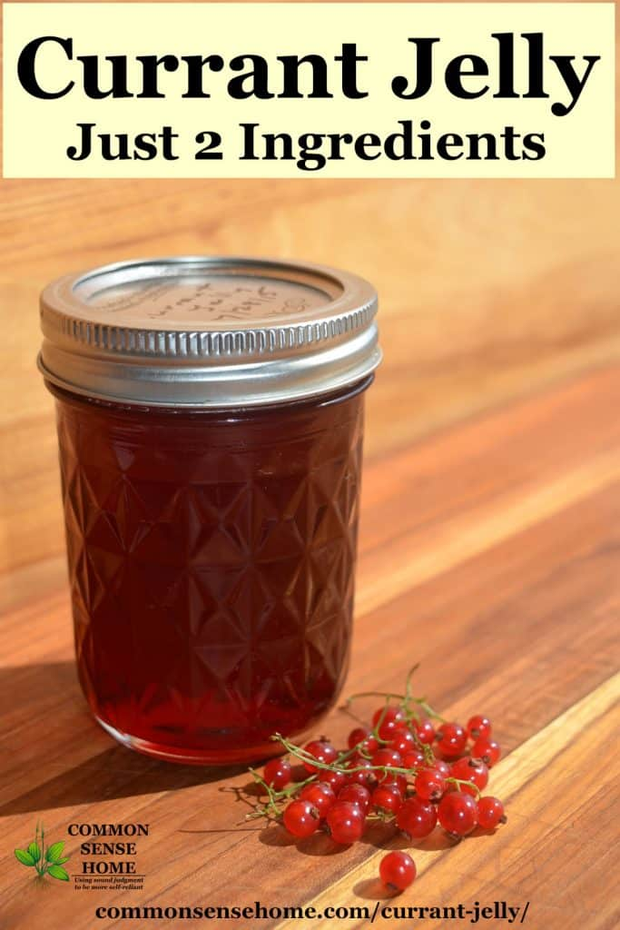 red currant jelly in jar with currants