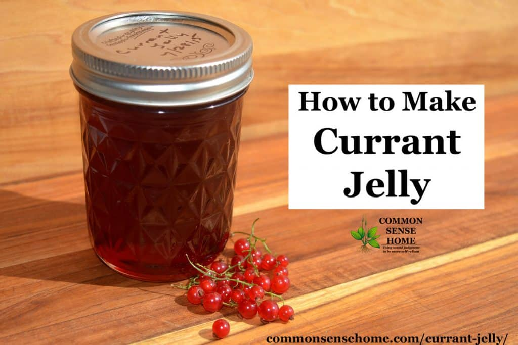 "jar of currant jelly and currants with text overlay ""how to make currant jelly"""