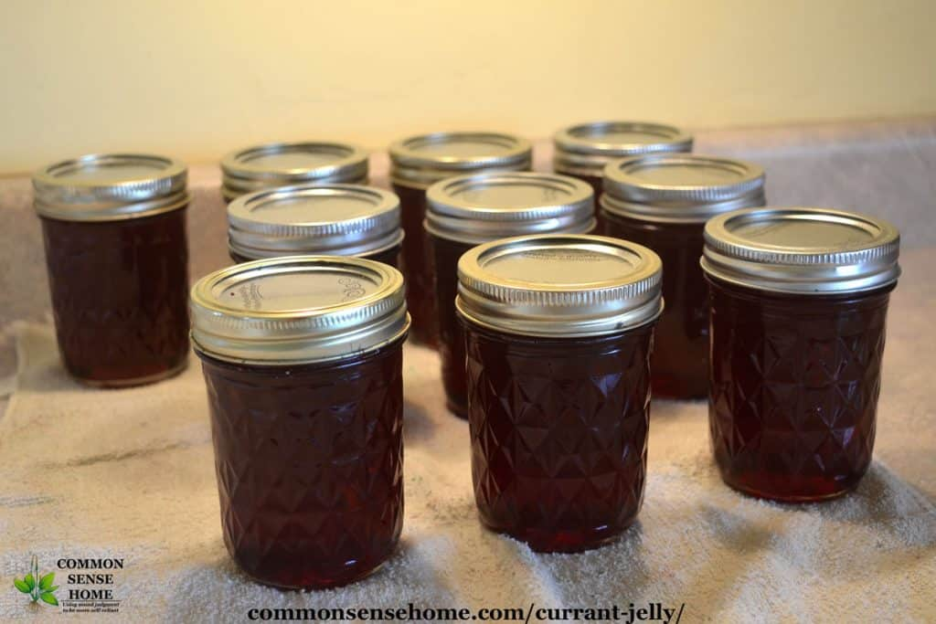 jars of red currant jelly sitting on towel on counter