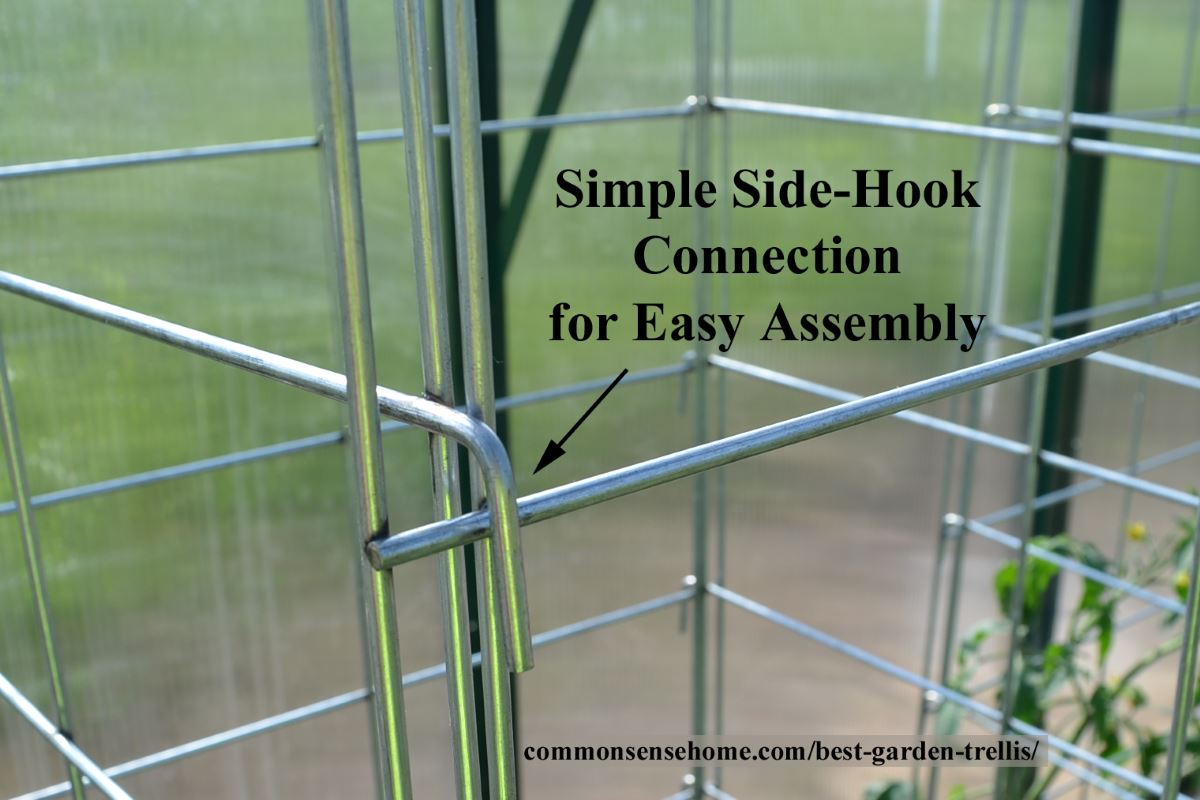 Trellis side hook close-up