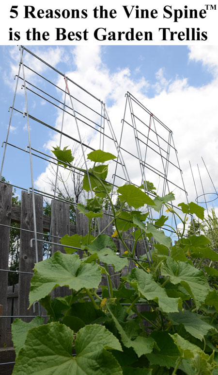 Learn how the Vine Spine™ Garden Trellis can make your vertical gardening easier with long lasting, American made quality and 5 different shapes in one trellis.