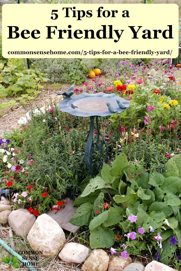 flowers surrounding combination bird bath /bee bath