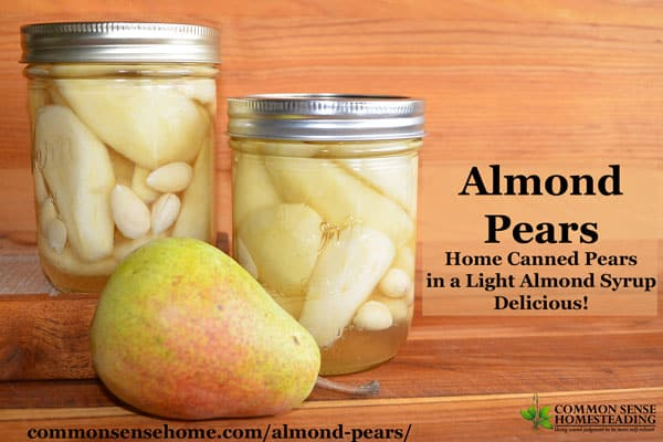 Home Canned Almond Pears - Light almond syrup and blanched almonds pair well with the natural sweetness of perfectly ripe pears.