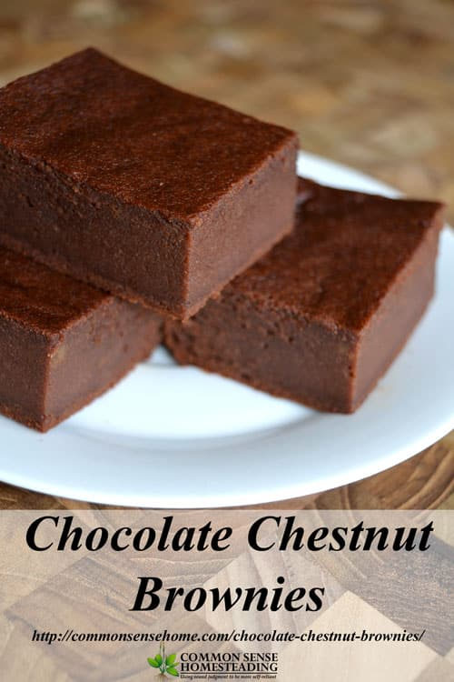 Chocolate Chestnut Brownies Gluten Free And Honey Sweetened